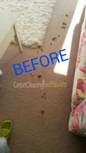 East_Palo_Alto_CA_CARPET_CLEANING_020_2