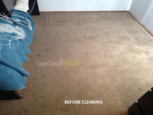 East_Palo_Alto_CA_CARPET_CLEANING_BEFORE_2